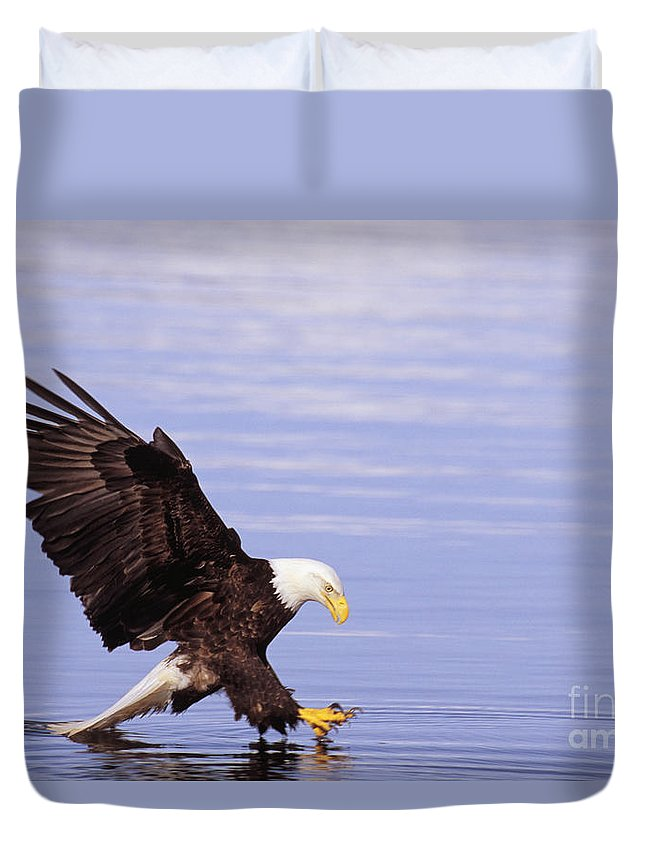 Afternoon Duvet Cover featuring the photograph Bald Eagle by John Hyde - Printscapes