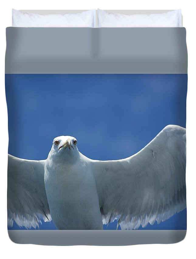 Bird Duvet Cover featuring the photograph Seagull by FL collection