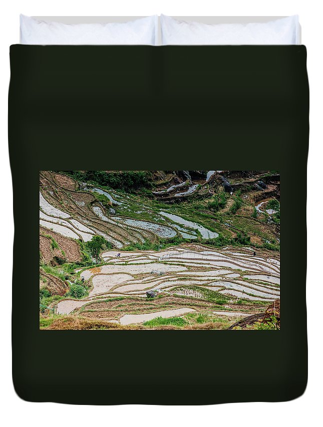 Terrace Duvet Cover featuring the photograph Longji Terraced Fields Scenery by Carl Ning