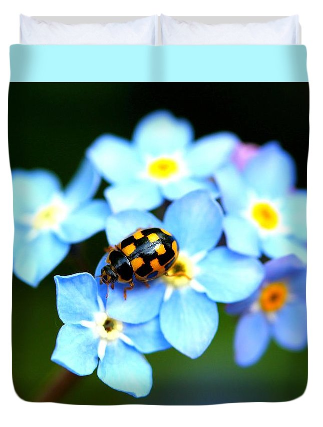 Bugs Duvet Cover featuring the photograph 14 Spot Ladybird by Adrian Cooch