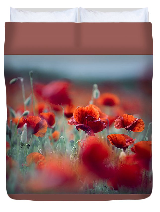 Poppy Duvet Cover featuring the photograph Summer Poppy Meadow by Nailia Schwarz