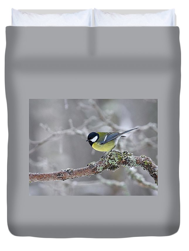 Lehtokukka Duvet Cover featuring the photograph Great Tit by Jouko Lehto