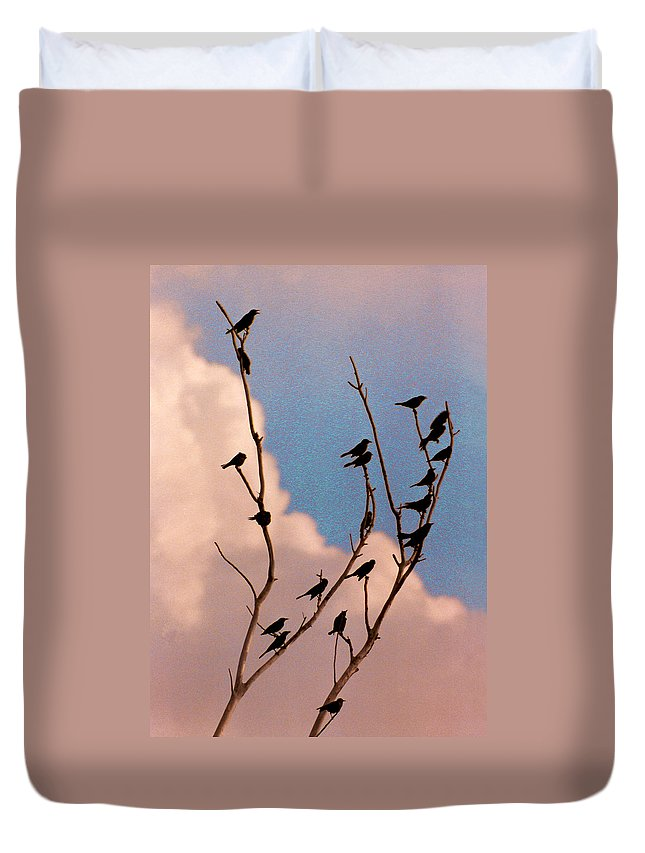 Birds Duvet Cover featuring the photograph 19 Blackbirds by Steve Karol