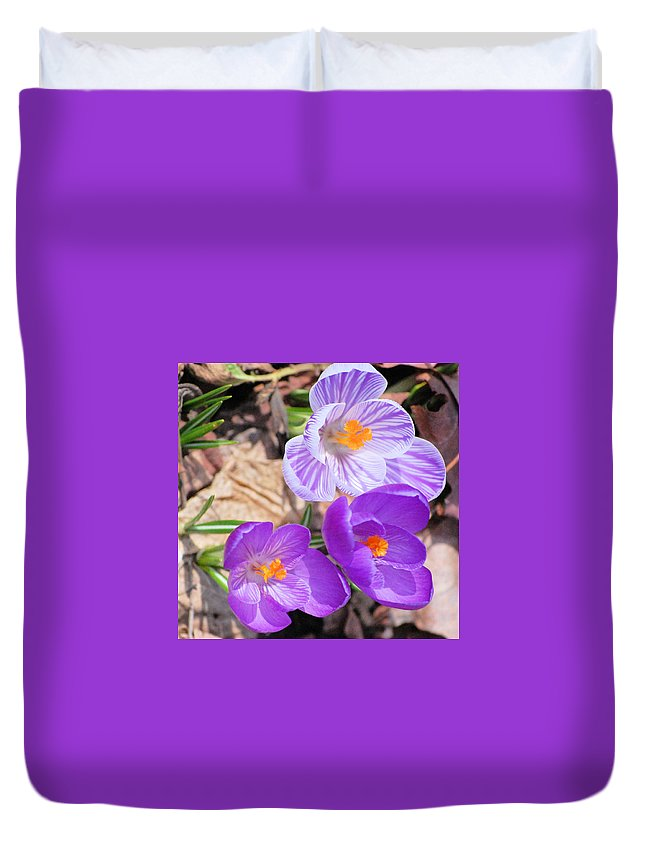Digital Photography Duvet Cover featuring the photograph 1st Flower In Garden 2010 Photo by David Lane