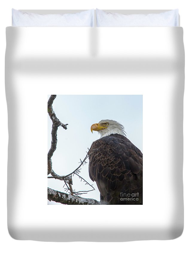 Bald Eagle Duvet Cover featuring the photograph American Bald Eagle by Carolyn Fox