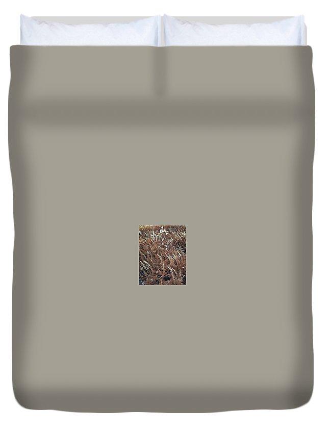 Invertebrate Duvet Cover featuring the digital art art 670 Eliot Porter by Eloisa Mannion