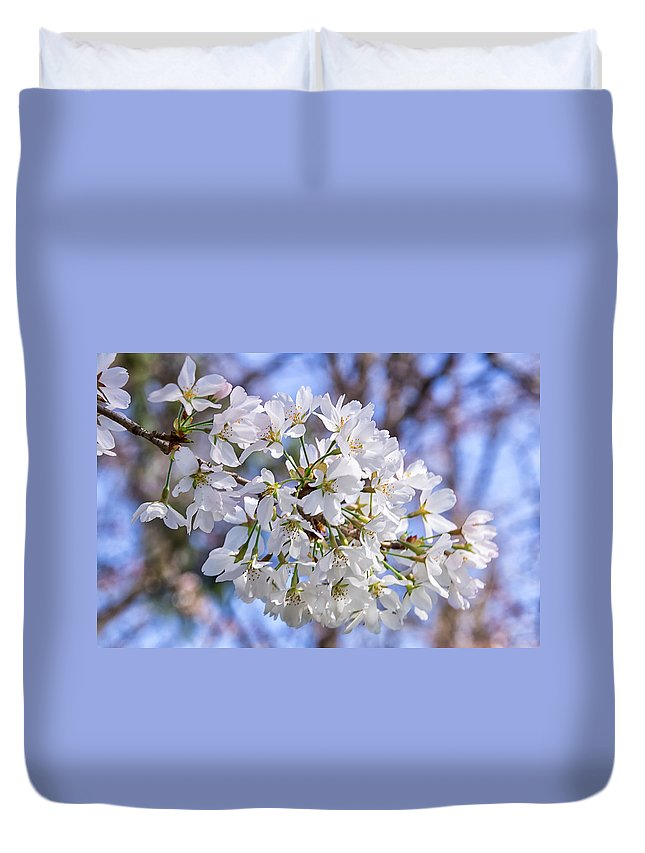 Cherry Trees Duvet Cover featuring the photograph Cherry Blossoms by Carol Ward