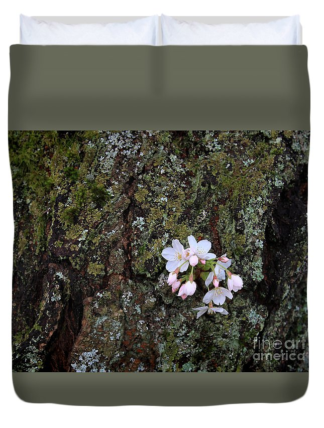 Cherry Blossom Duvet Cover featuring the photograph Cherry Blossoms by Tari Simmons