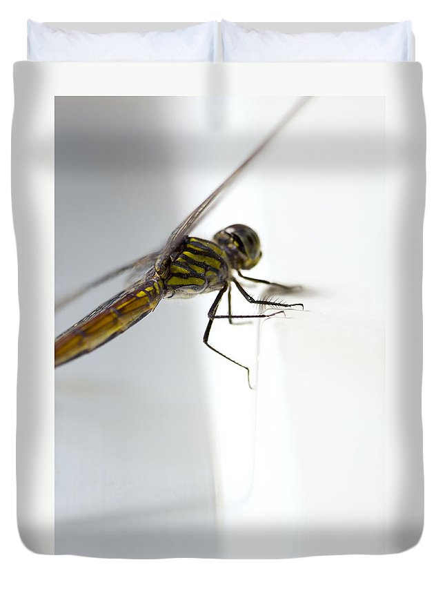 Lightweight Duvet Cover featuring the photograph Close Up Shoot Of A Anisoptera Dragonfly by U Schade