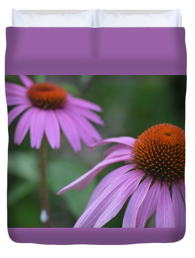 2 Flowers Duvet Cover featuring the photograph 2 Coneflowers by Glenda Ryan