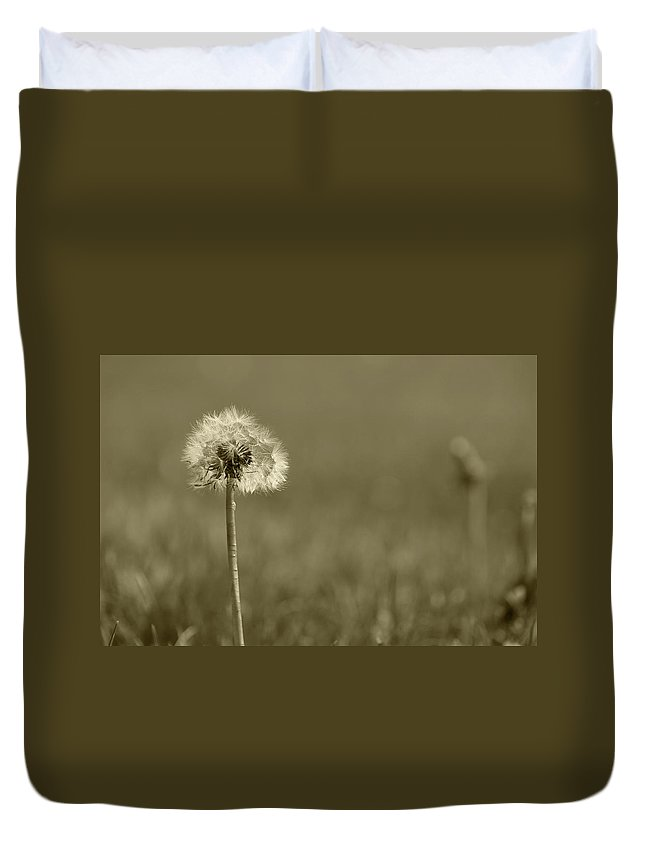 Dandelion Duvet Cover featuring the photograph Dandelion Flower Seeds by Robert Hamm