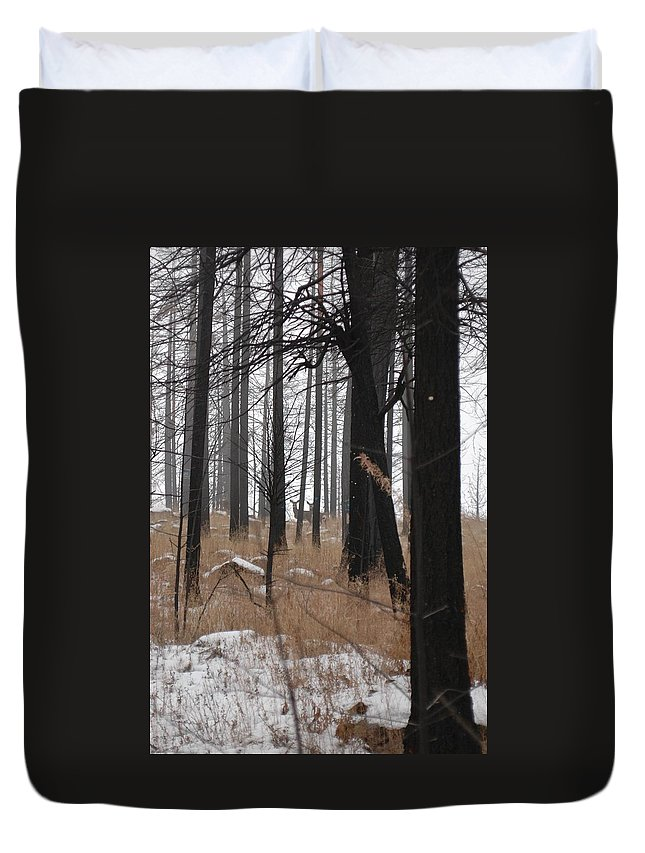 Trees Duvet Cover featuring the photograph 2 Deers by Sara Stevenson