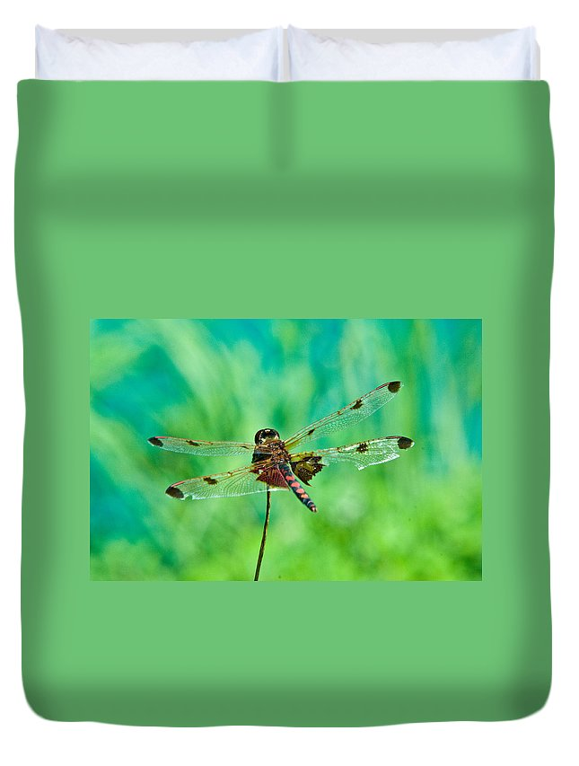 Dragonfly Duvet Cover featuring the photograph Dragonfly Resting by Douglas Barnett