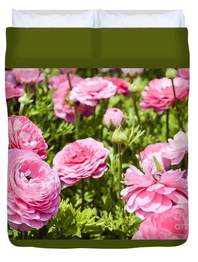 Pink Duvet Cover featuring the photograph field of cultivated Buttercup by Doron Magali