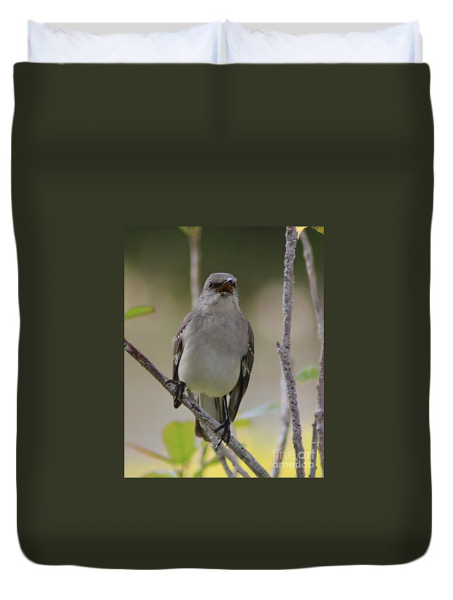 Fly Catcher Duvet Cover featuring the photograph Fly Catcher by Tommy Baker
