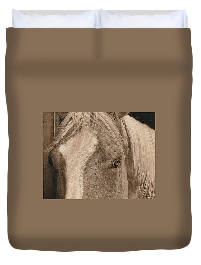 Horse Duvet Cover featuring the photograph Golden by JAMART Photography