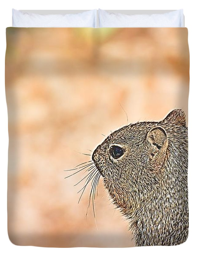 Squirrels Duvet Cover featuring the photograph Grand Canyon Experience Series by Berta Keeney