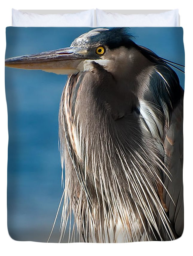 Bird Duvet Cover featuring the photograph Great Blue Heron by Rich Leighton