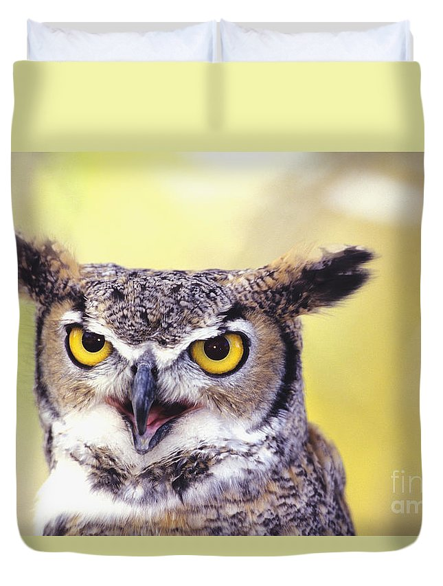 Animal Art Duvet Cover featuring the photograph Great Horned Owl by John Hyde - Printscapes
