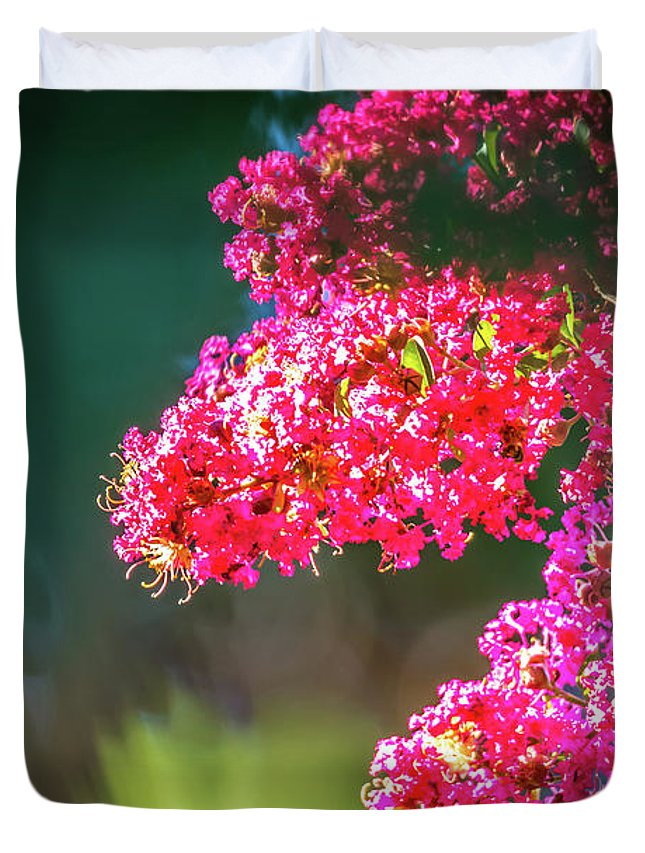 Crepe Duvet Cover featuring the photograph Lagerstroemia Indica Crape Myrtle Crepe Myrtle by Alex Grichenko