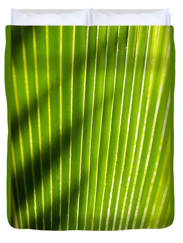 Botanical Duvet Cover featuring the photograph Leaf Close-up by Tomas del Amo - Printscapes