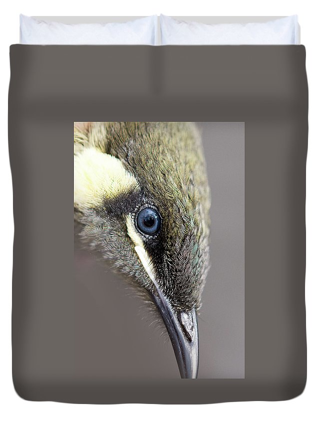 Banding Duvet Cover featuring the photograph Lewins Honeyeater by Rodney Appleby