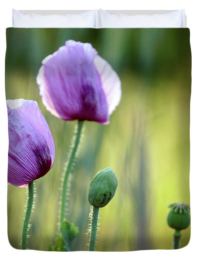 Palatinate Duvet Cover featuring the photograph Lilac Poppy Flowers by Nailia Schwarz