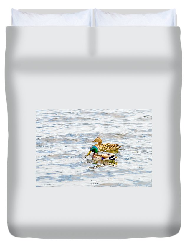 Dnieper Duvet Cover featuring the photograph Male And Female Ducks by Alain De Maximy