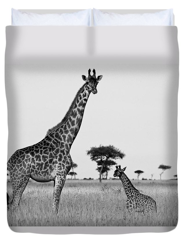 Africa Duvet Cover featuring the photograph Meet My Little One by Michele Burgess