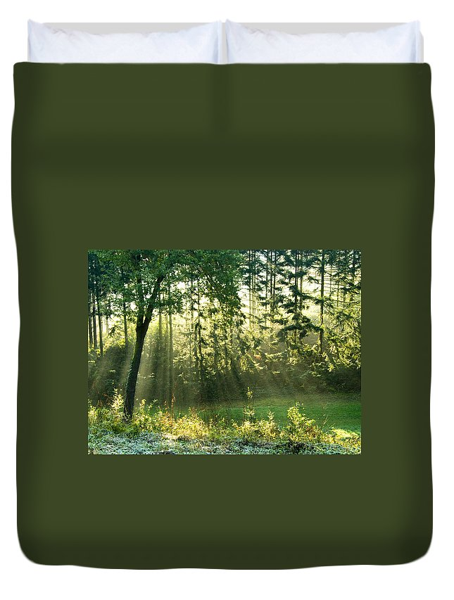 Light Duvet Cover featuring the photograph Morning Light by Daniel Csoka