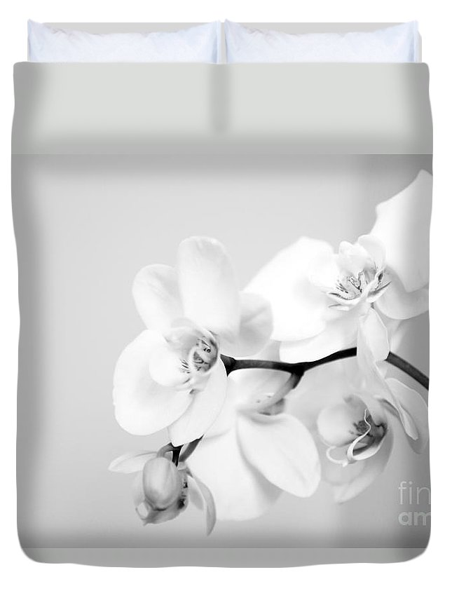 Orchid Duvet Cover featuring the photograph Orchid by Amanda Barcon