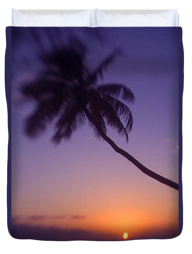 Beach Duvet Cover featuring the photograph Palm Over The Beach by Ron Dahlquist - Printscapes