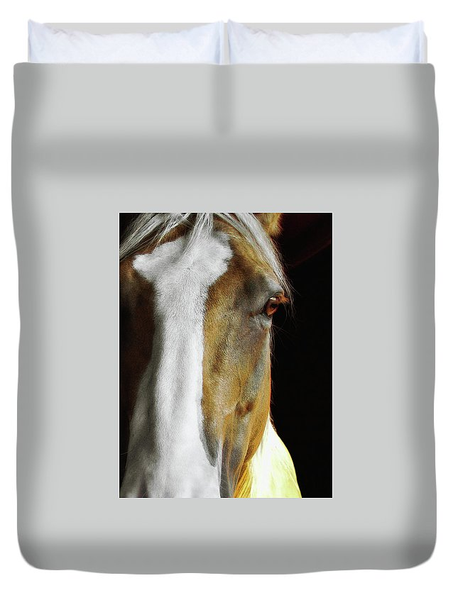 Horse Duvet Cover featuring the photograph Palomino by JAMART Photography