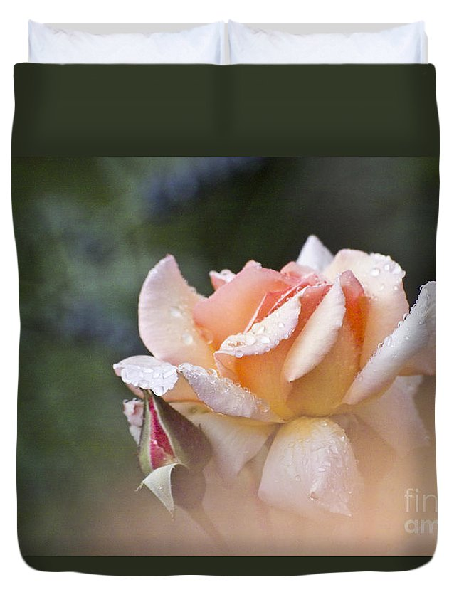 Rose Duvet Cover featuring the photograph Pink Rose by Heiko Koehrer-Wagner