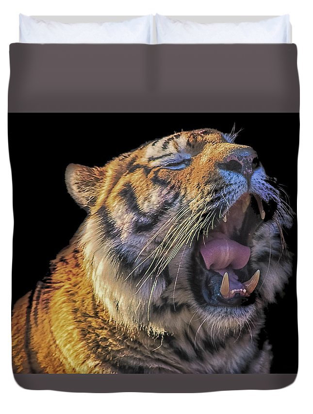 Tiger Duvet Cover featuring the photograph Roar by Martin Newman