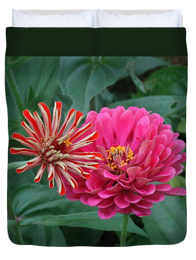Flower Duvet Cover featuring the photograph Side By Side by Greg Boutz