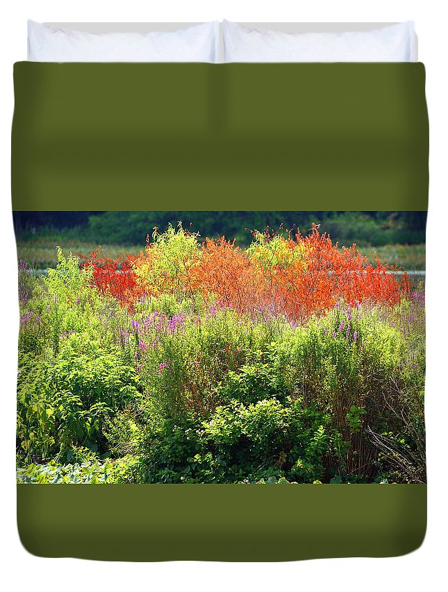 Nature Duvet Cover featuring the photograph Summer Colors by David Rosenthal