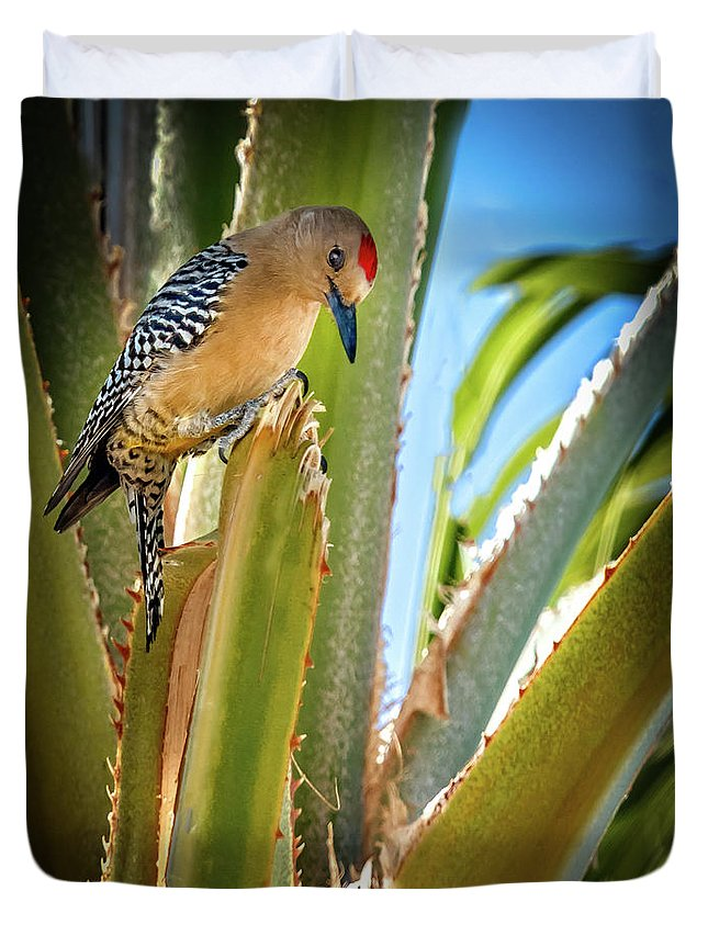 Bird Duvet Cover featuring the photograph The Gila Woodpecker by Robert Bales
