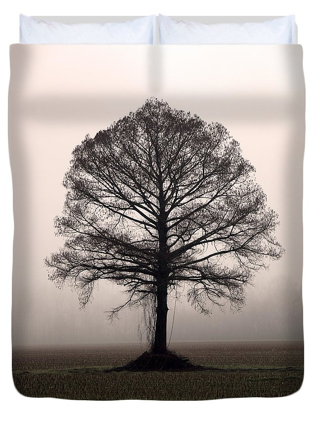 Trees Duvet Cover featuring the photograph The Tree by Amanda Barcon