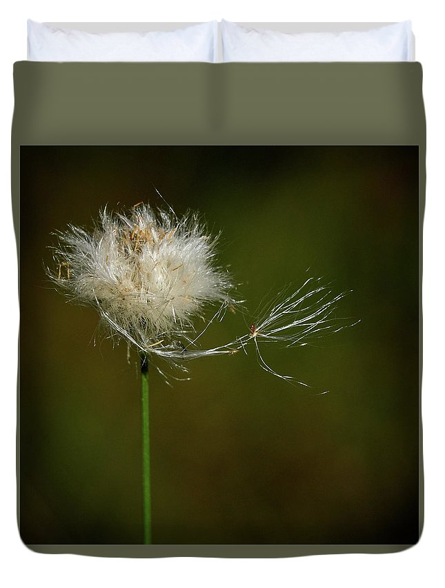 Finland Duvet Cover featuring the photograph Tussock Cottongrass by Jouko Lehto