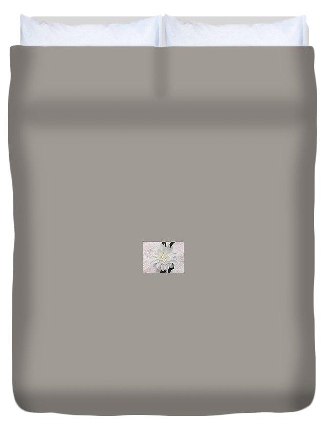 Dahlia Duvet Cover featuring the photograph White Dahlia by Jeannie Rhode
