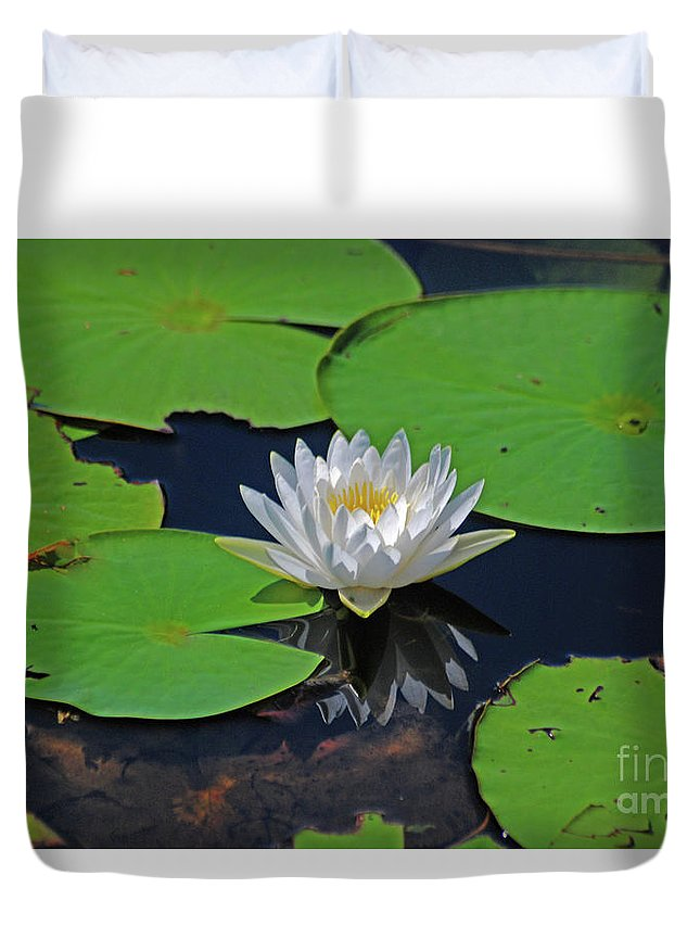 White Water Lily Duvet Cover featuring the photograph 2- White Water Lily by Joseph Keane