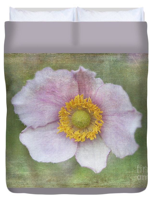 Windflower Duvet Cover featuring the photograph Windflower by Alenka Krek