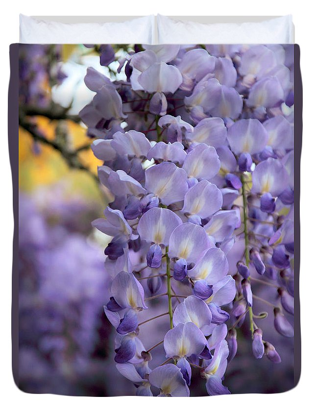 Flower Duvet Cover featuring the photograph Wisteria Blossom by Jessica Jenney
