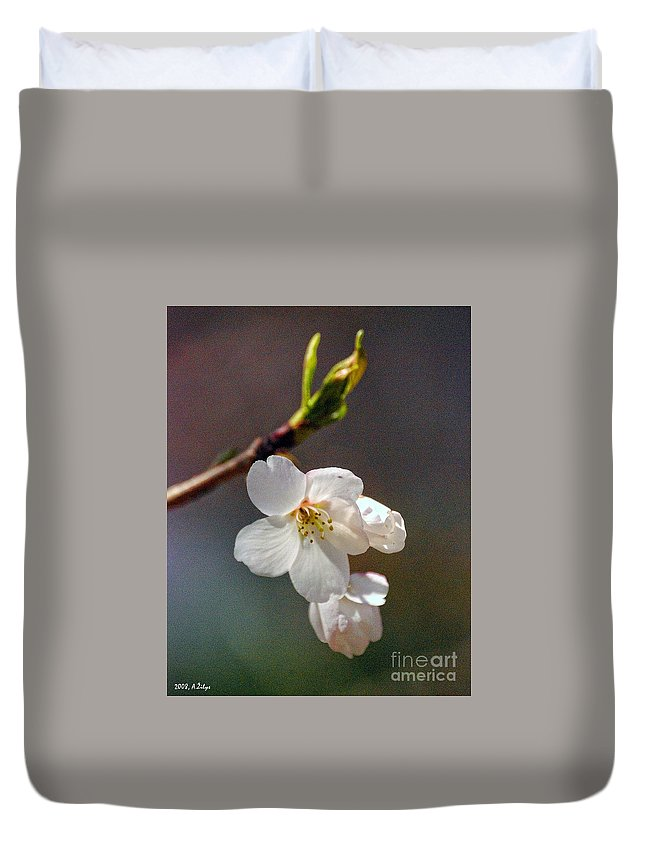 White Flower Duvet Cover featuring the photograph 2008 Springtime 6365 by Arvydas Zilys