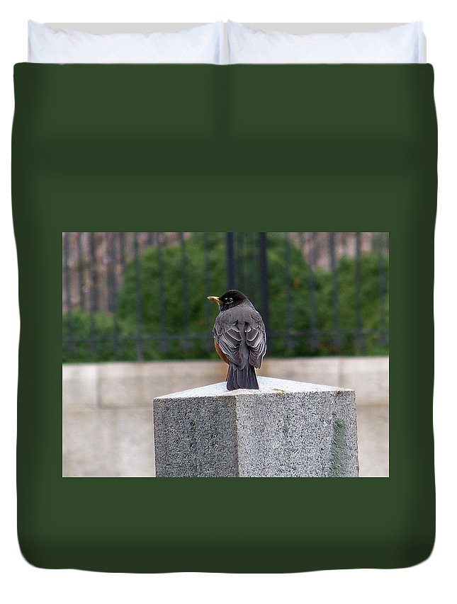 Birds Duvet Cover featuring the photograph 2011-robin by Martha Abell