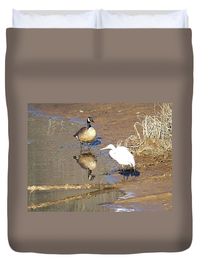 Birds Duvet Cover featuring the photograph 2012-white Crane And Canadian Goose by Martha Abell