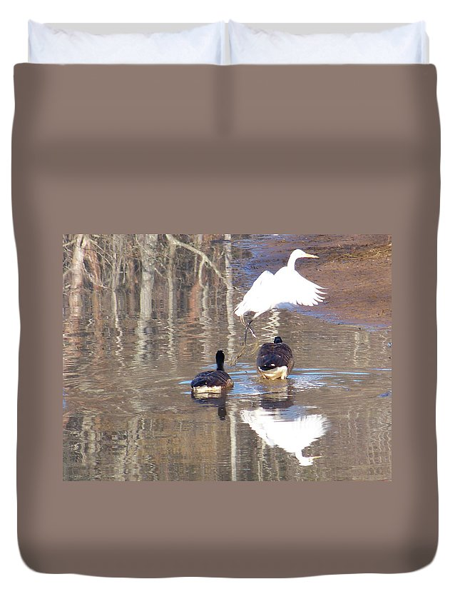 Birds Duvet Cover featuring the photograph 2013-white Crane And Canadian Geese by Martha Abell