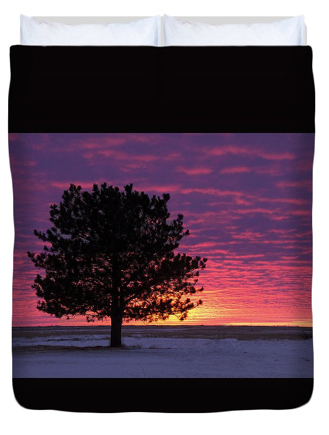 Landscape Duvet Cover featuring the photograph 2015 New Year Sunset by Teresia Moore