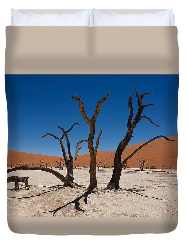 Kalahari Desert Duvet Cover featuring the photograph Dead Vlei by Davide Guidolin